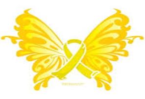 SP Butterfly